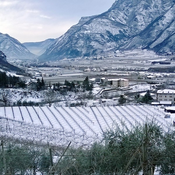 Valle in inverno.jpg