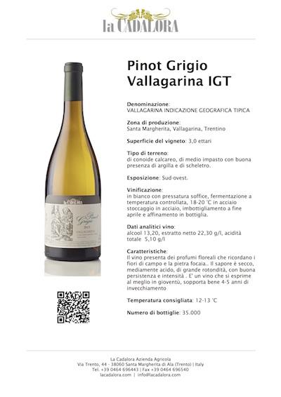 SCHEDA TECNICA - Scarica la scheda di questo vino cliccando qui