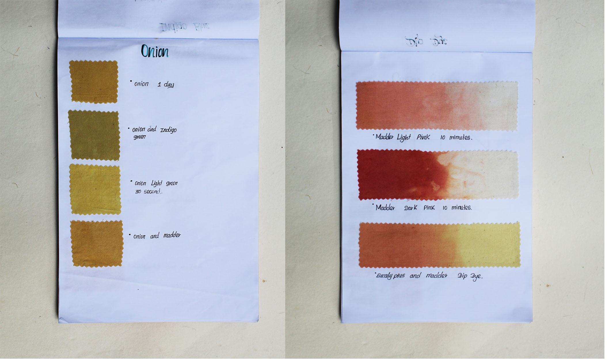 Dye book blog.jpg