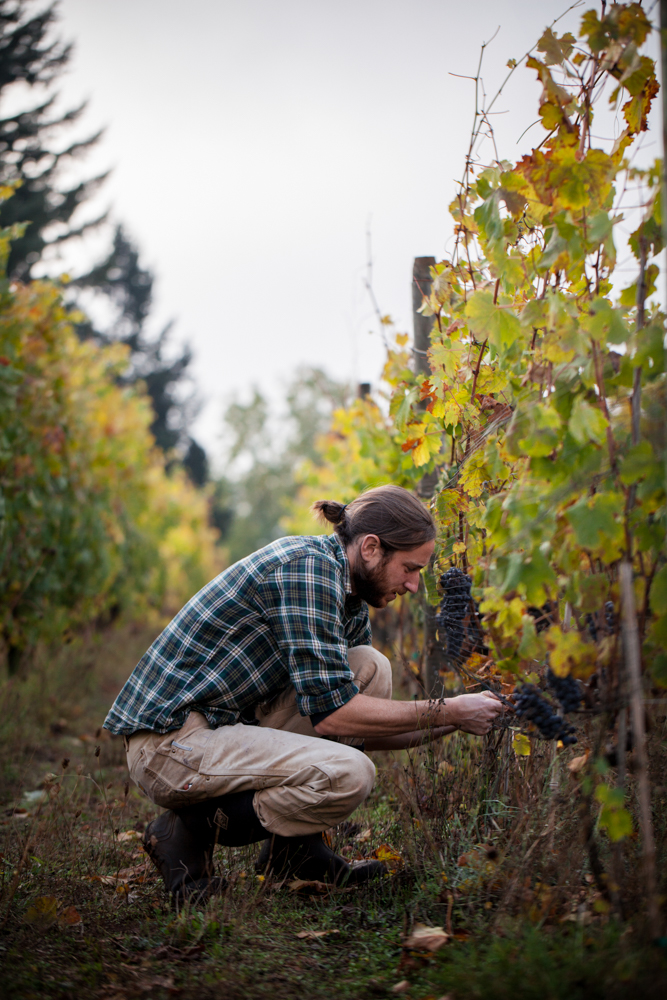 jeremyfenske_photography_video_cameron_winery-8798.jpg