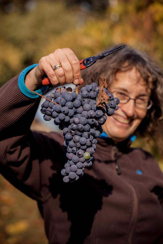 jeremyfenske_photography_video_cameron_winery-8938.jpg