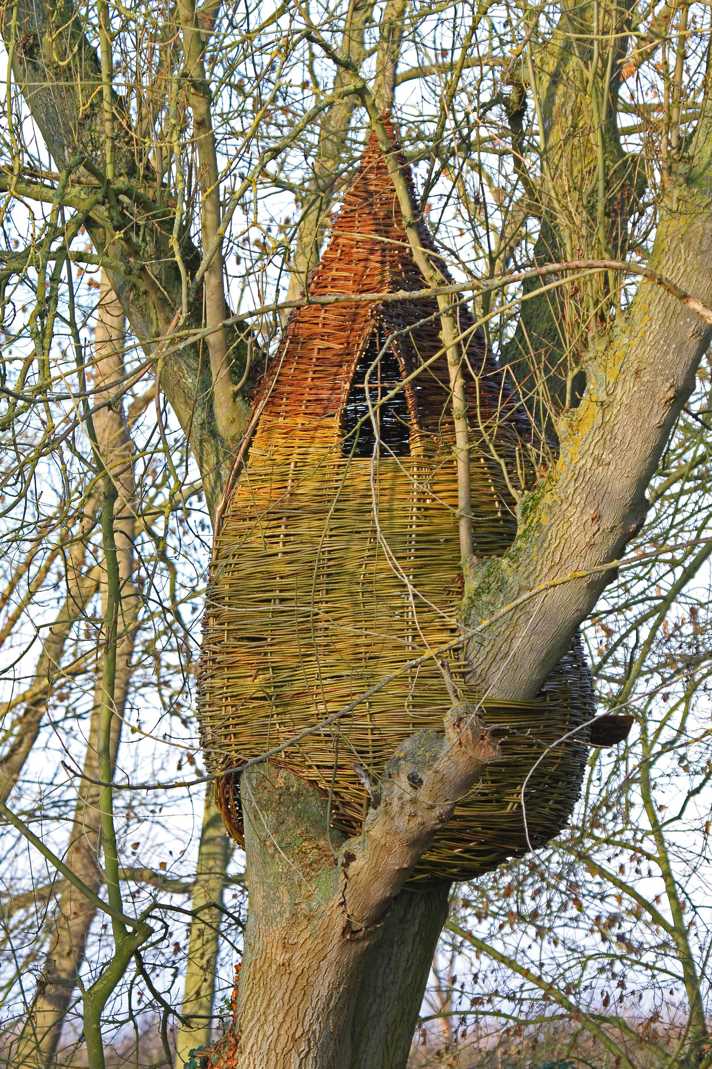 Bespoke tree houses and dens by WonderWood