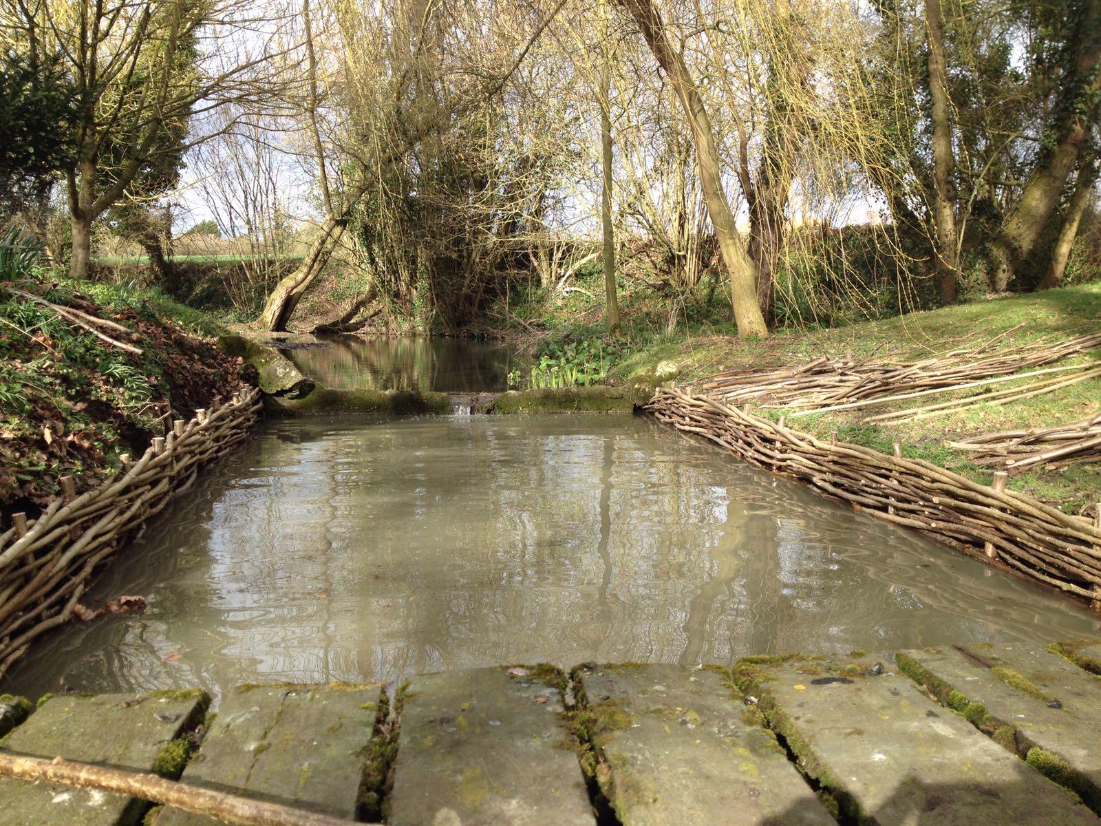 River bank restoration
