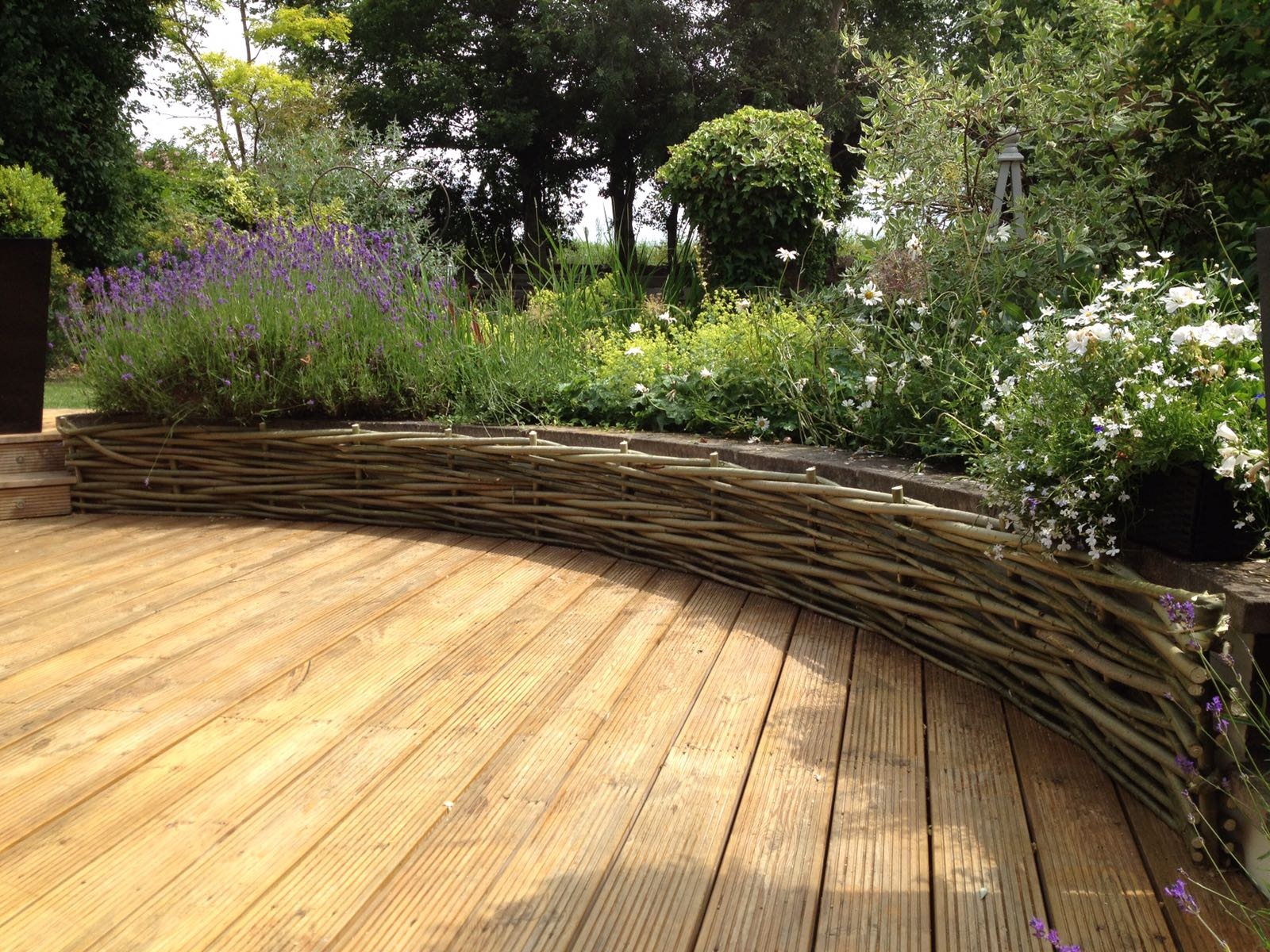 Low woven willow fence