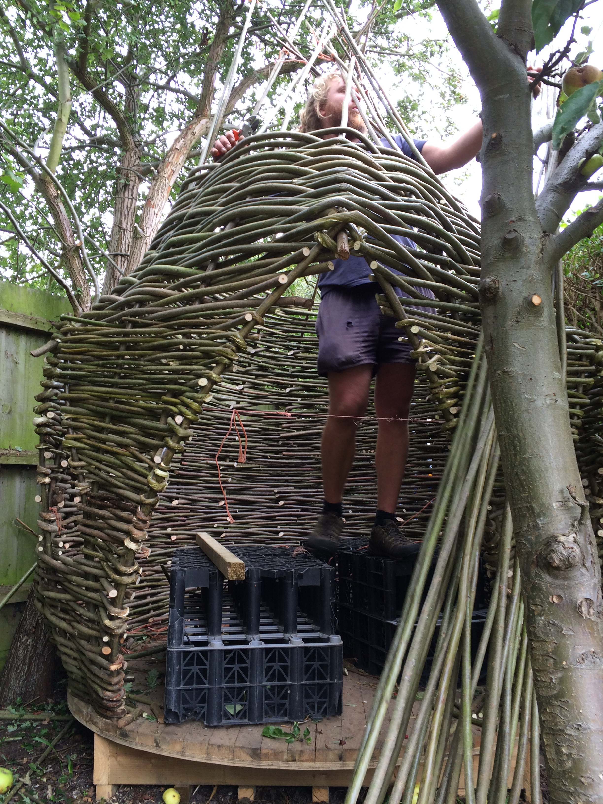 Childrens dens and treehouses