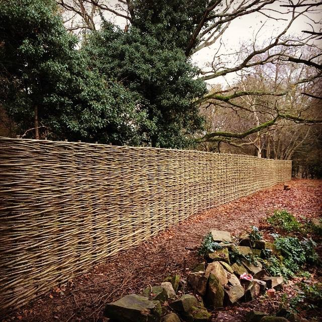 WonderWood woven willow fence
