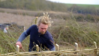 Hedgelaying Competition 2017