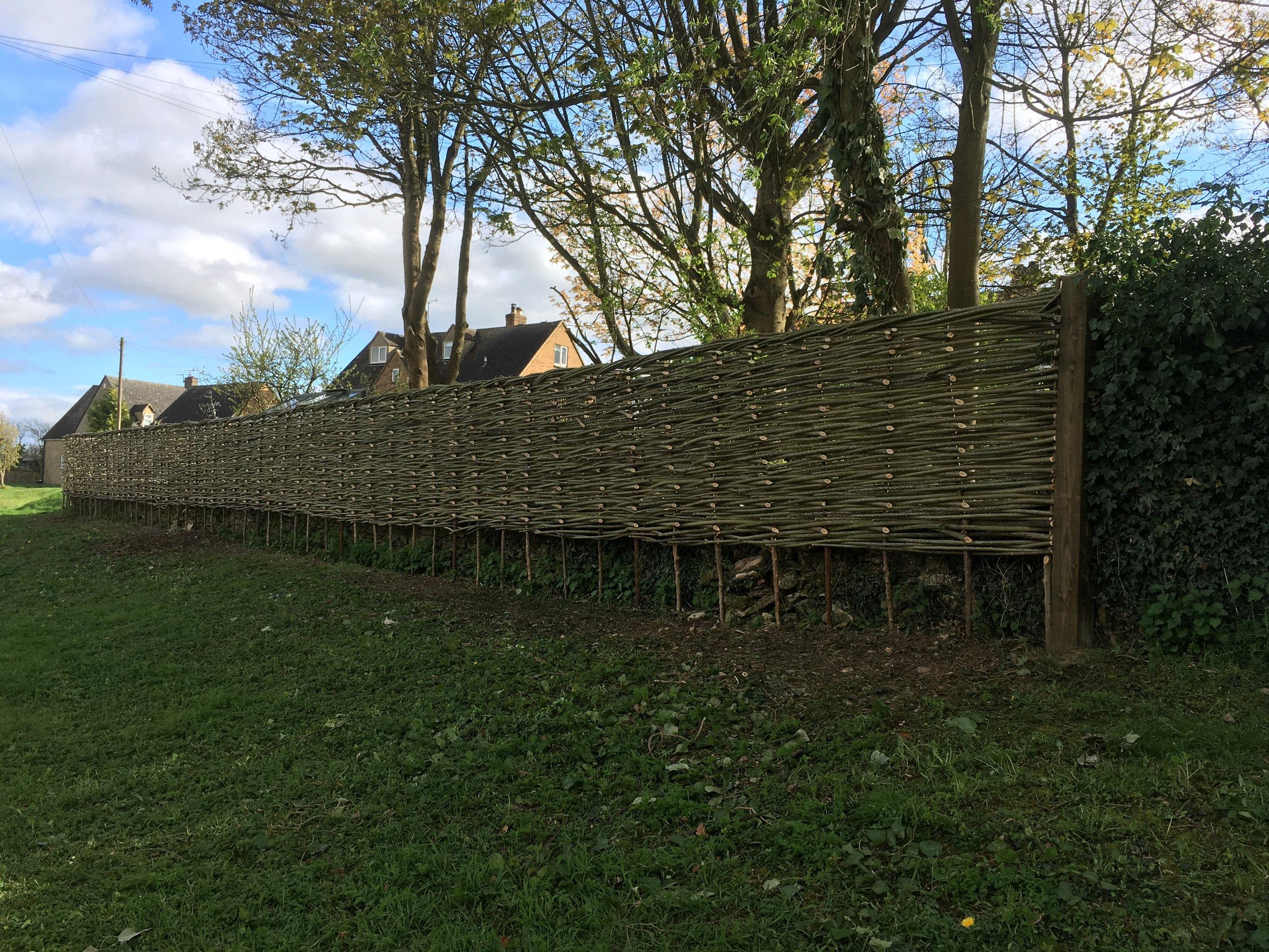 Wicker privacy fence