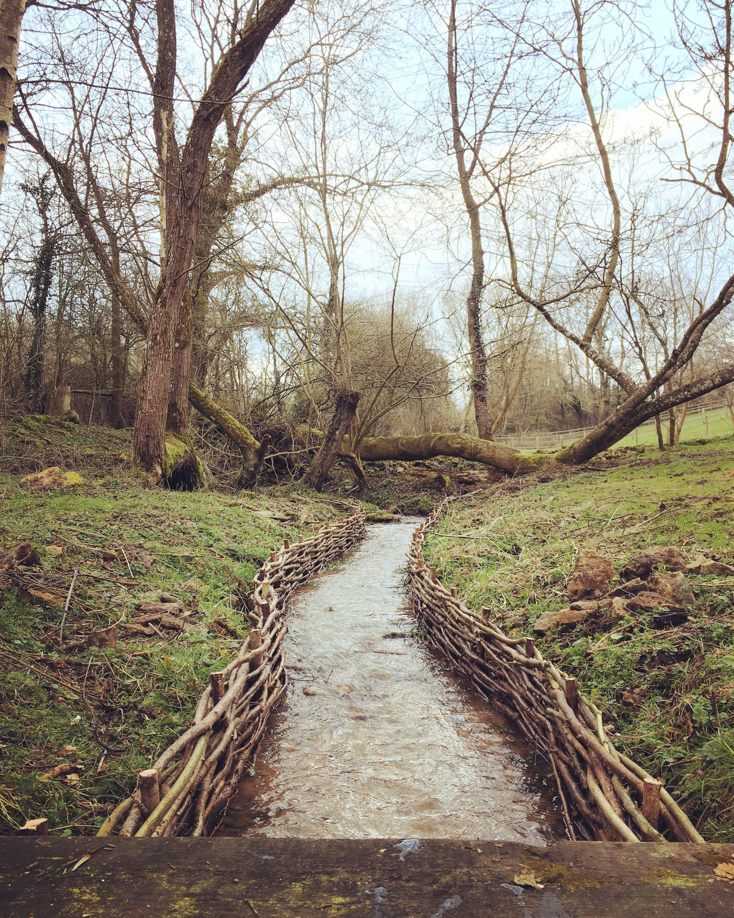 Riverbank restoration by WonderWood