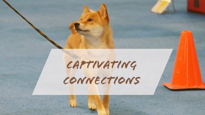 CAPTIVATING CONNECTIONS.jpg