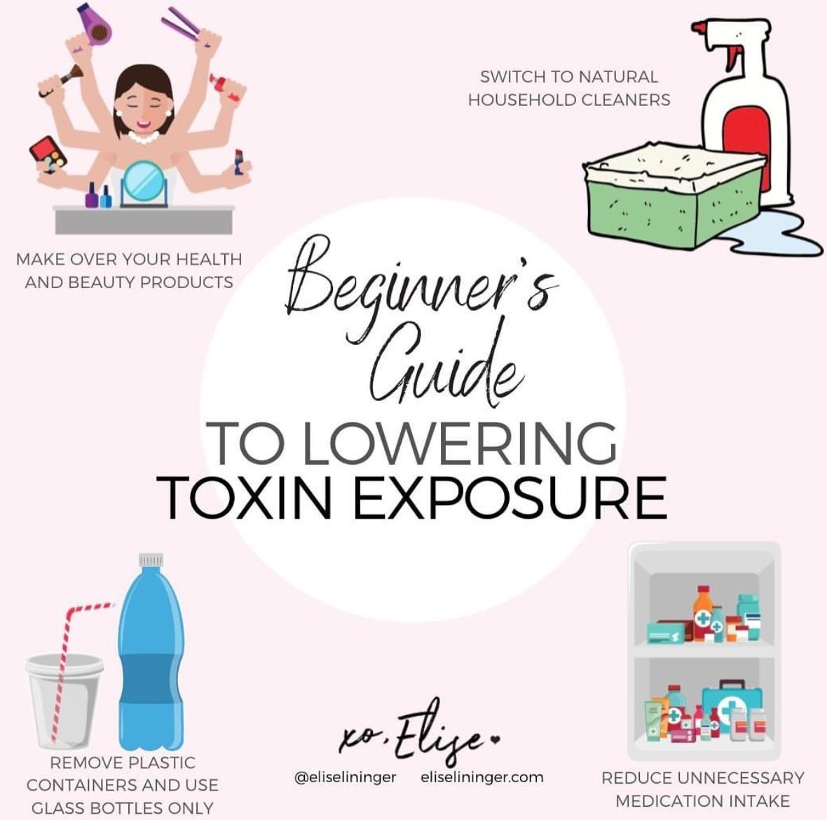 5 Ways To Detox Your Body — Elise Lininger