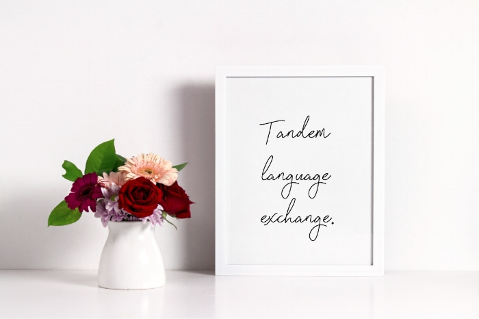 Tandem-language-exchange-1.jpg