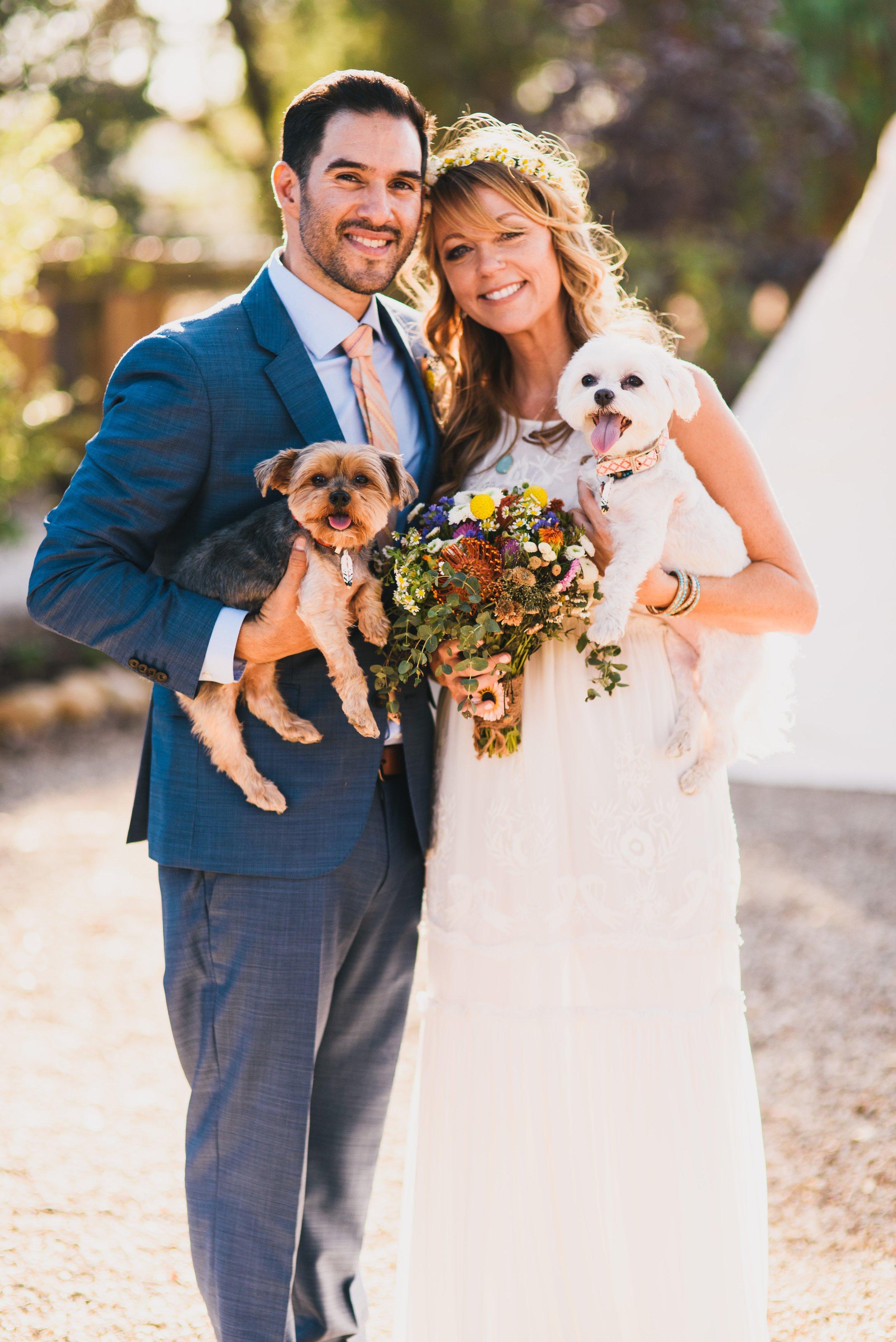 Weddings -pups.jpg