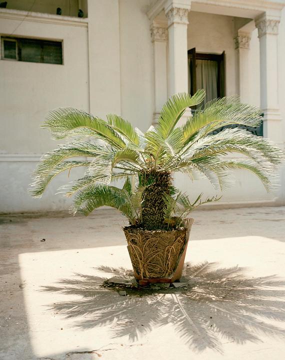 NanditaRamanRAM_06.jpg