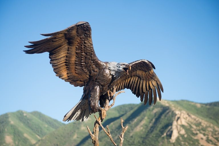 gibby-bronze-life-size-eagle-sculpture-triumphant-3_orig.jpeg