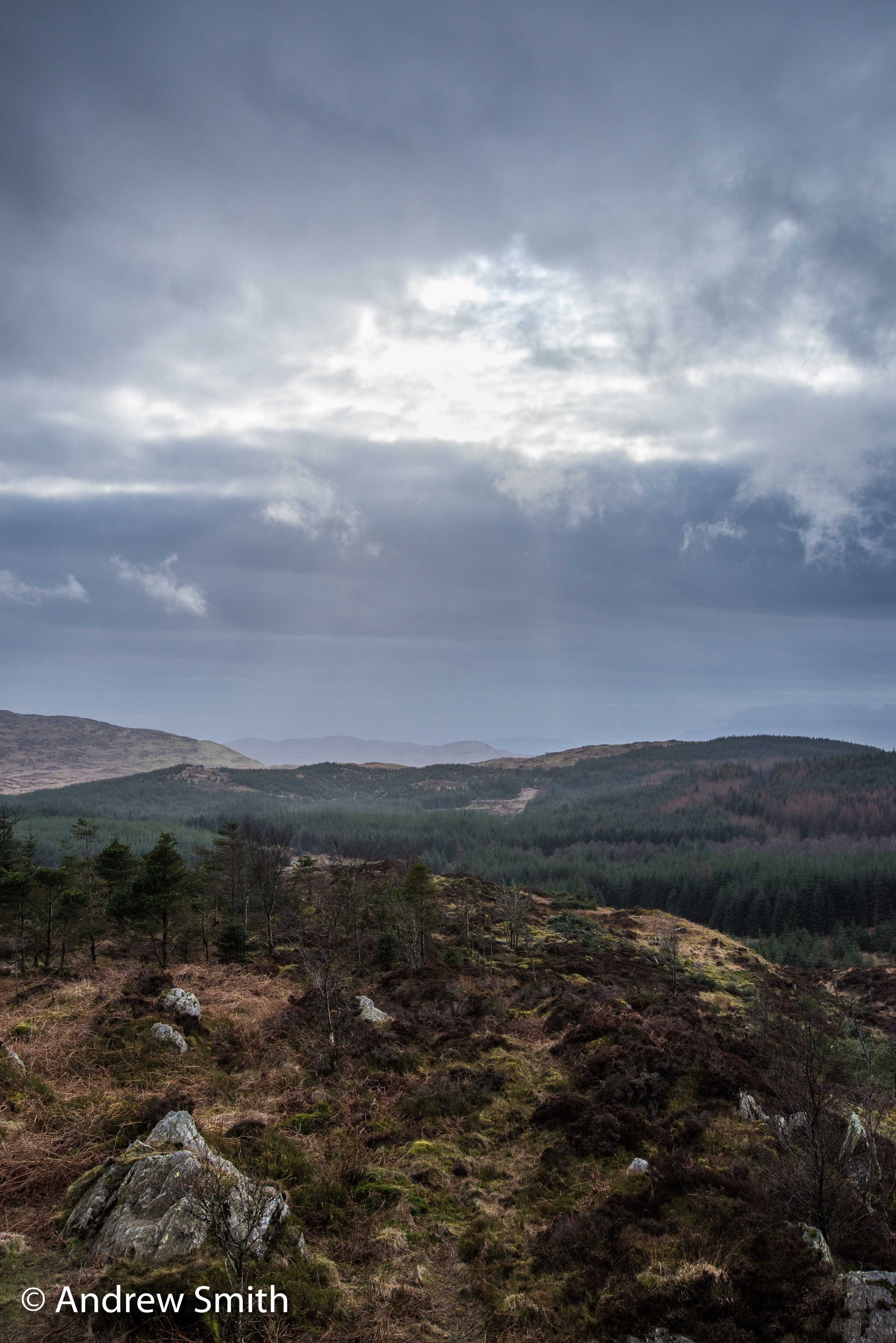 Summit of Carron Crag at Grizdale Forest