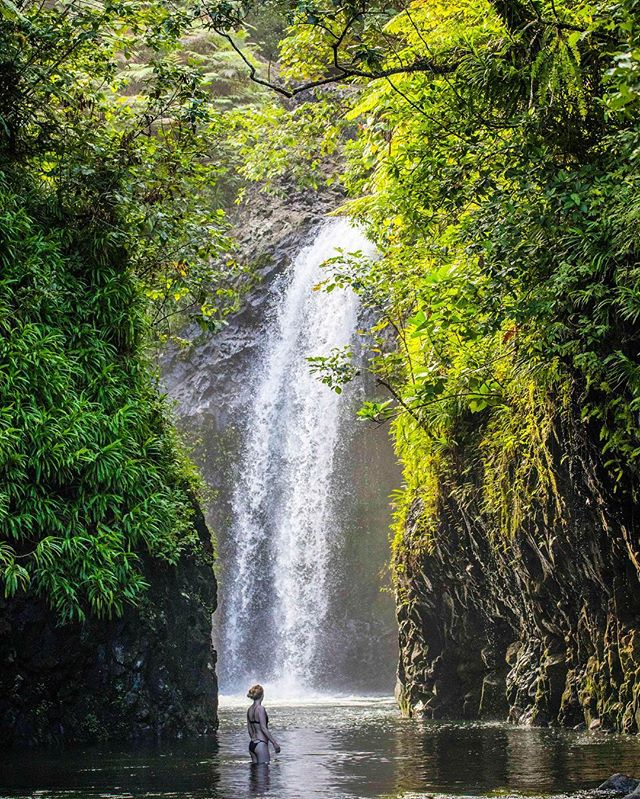The forested waterfalls of Bouma National Heritage Park draw visitors to Taveuni but despite the protection on paper significant areas of forest have continued to be cleared even since I first visited five years ago. In the absence of forest rangers it is critical that communities police themselves to protect parks like this and the right kind of tourism can help provide financial incentives to do so. 📸 PC @ipmarkham . . . . . . . . . . . . #fiji # #lifeofadventure #awakethesoul #lastingvisuals #passionpassport #traveldeeper #welivetoexplore #roamtheplanet #agameoftones #createexplore #exploretocreate #seeyououtthere #discoverearth