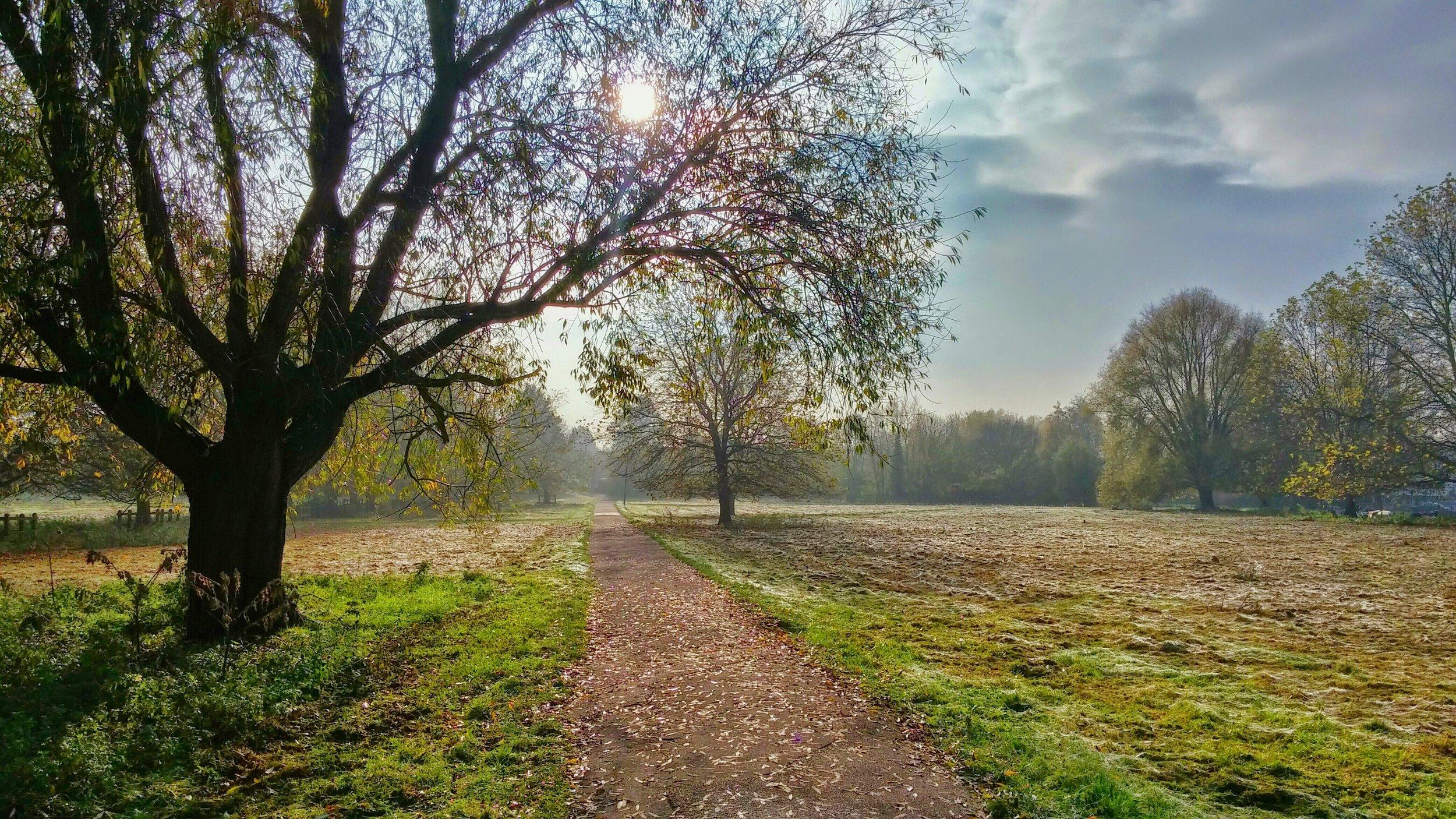 percorso-path-onoranze-funebri-conegliano