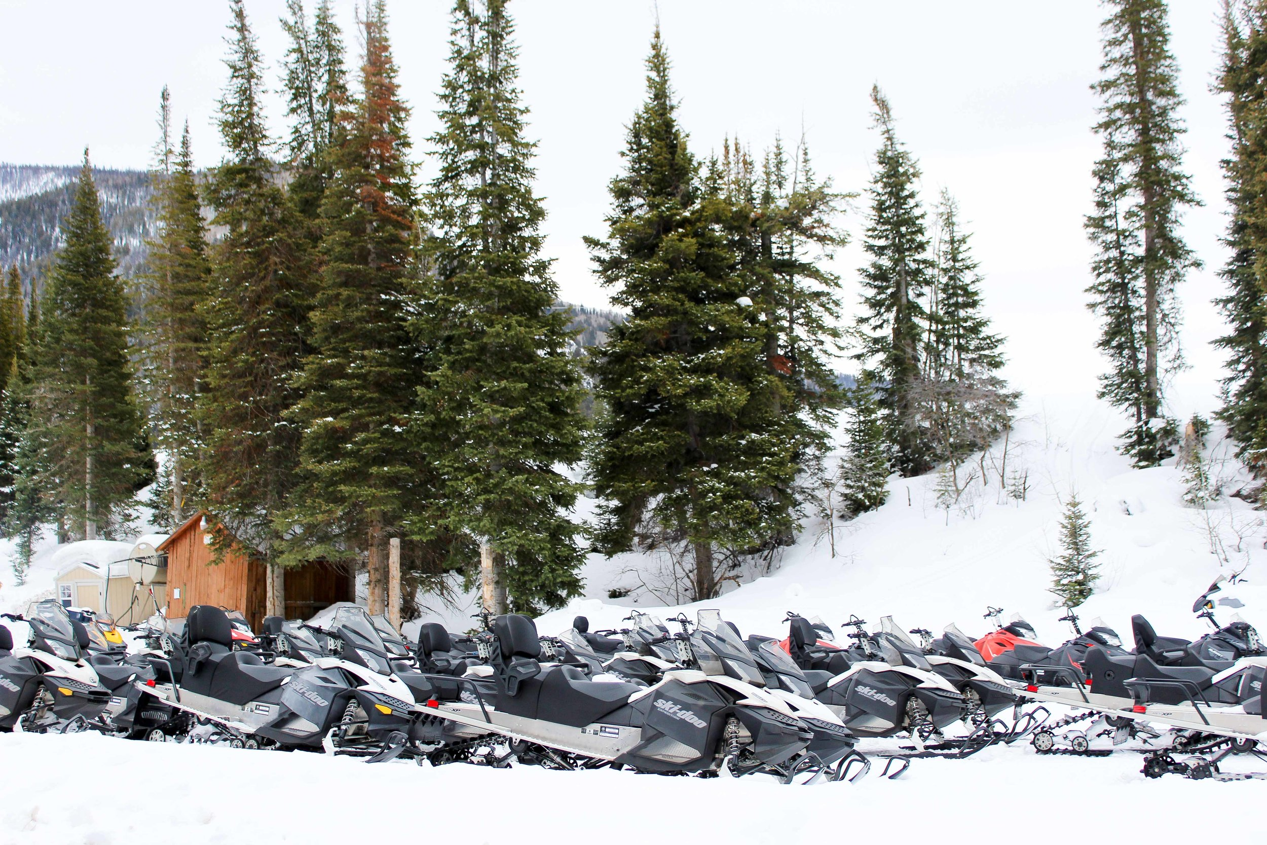 snowmobiles-1.jpg