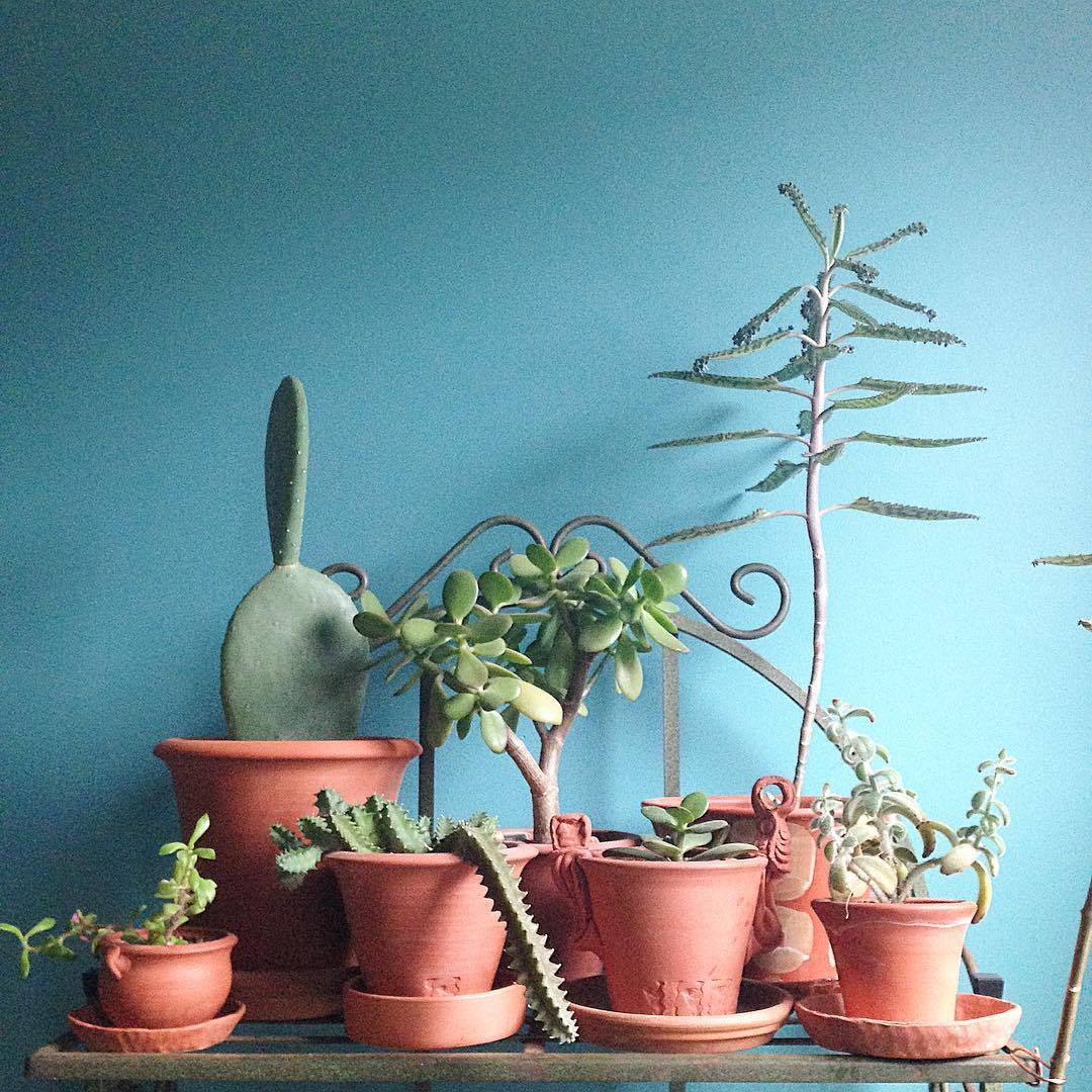 Handcrafted, Contemporary Plant Pots, Made In Philadelphia by Two Sweethearts. {30% off}{F} - Palmer Planter CompanyUse code: THANKS30 for 30% off orders over $50. Valid: 11/21 to 11/27. Discount applies to orders over $50Popular: Clove Hill Orchid Pot