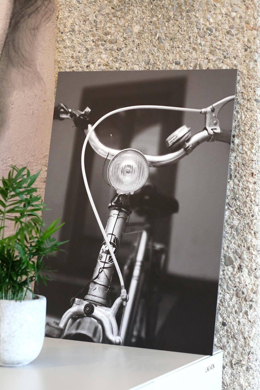 The friendly Bike.jpg