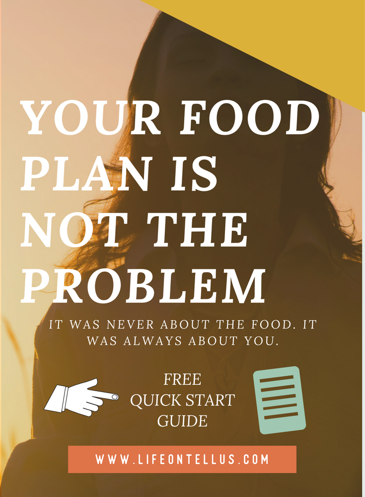 Your food plan is not the problem