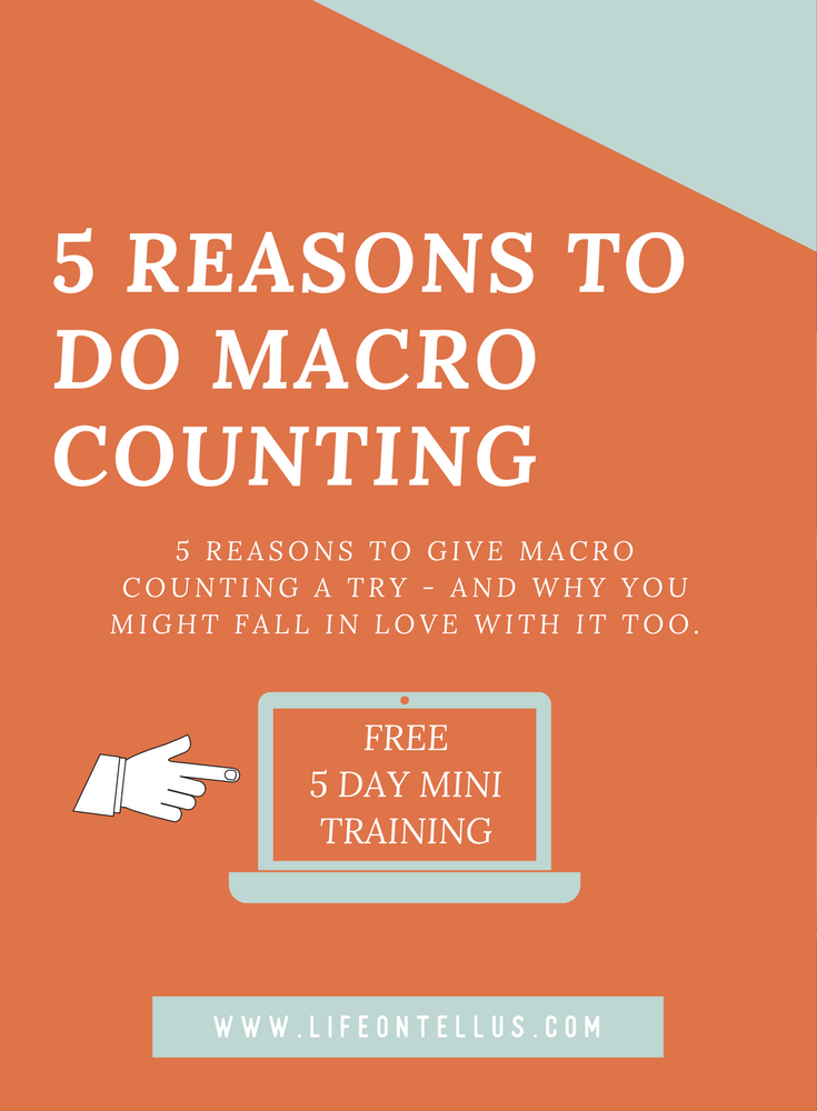 5 reasons to give macro counting a try
