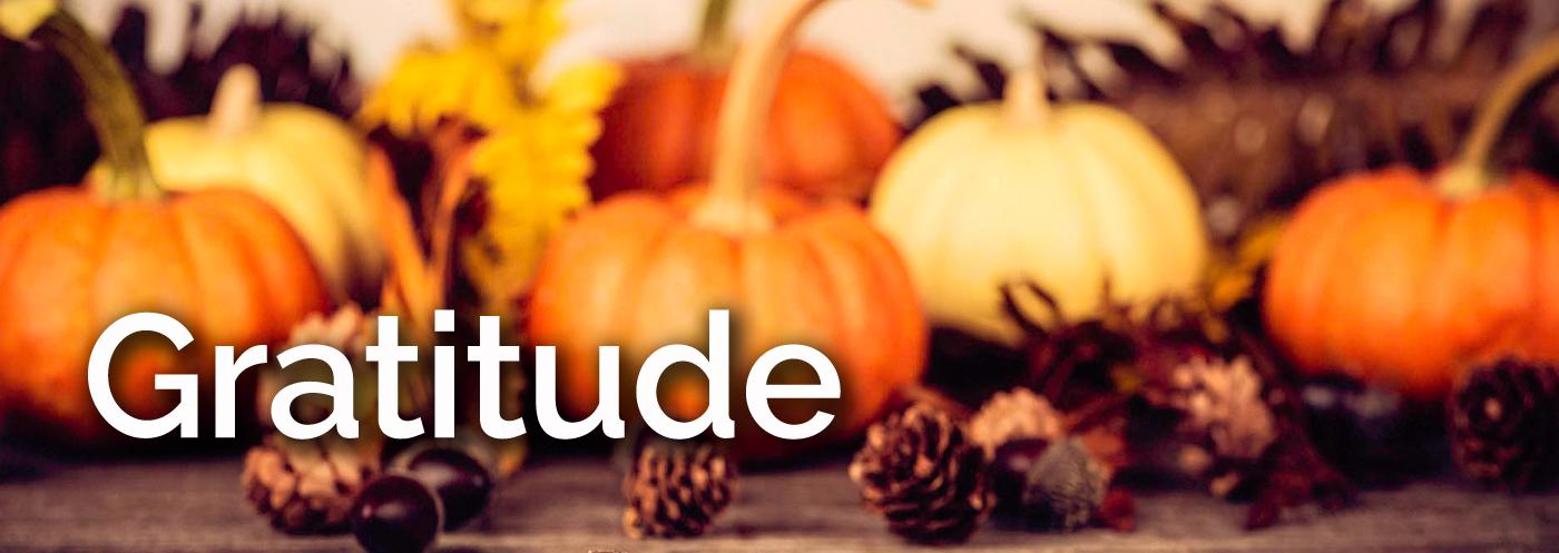 Gratitude banner.jpg