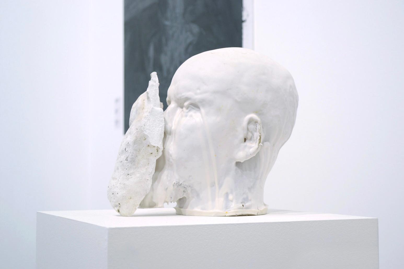 Igor 2, 2014/resina, silicone e gesso/25 x 35 x 40 cm_