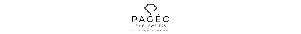 pageo-logo-2.png