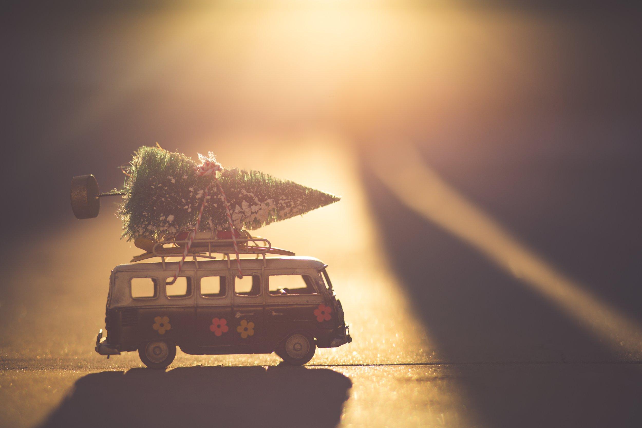 Christmas tree on a van