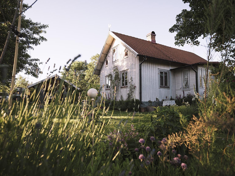 Top gepflegter Garten mit vielen Blumen