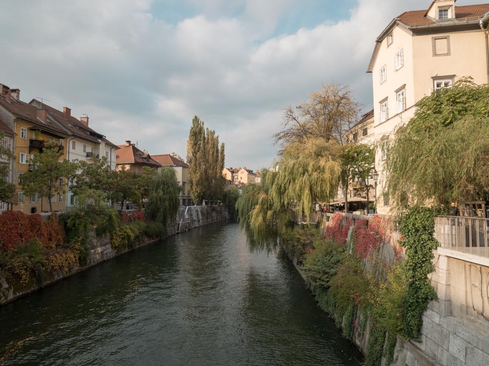 Der Laibach (Ljubljanica)