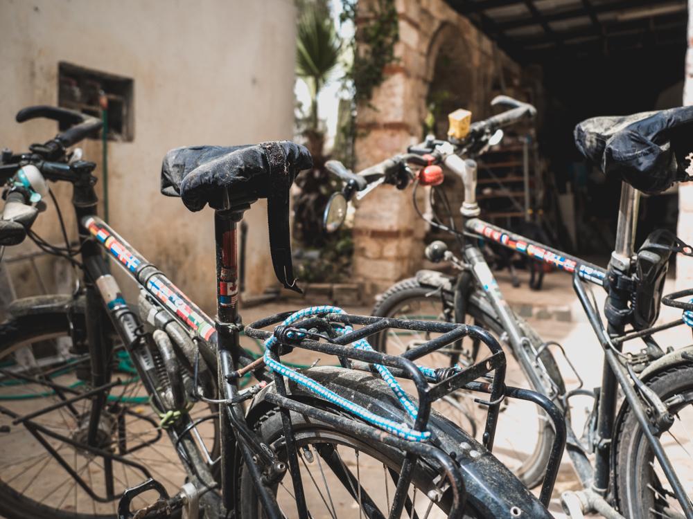 Unsere Fahrräder nach dem Winterschlaf