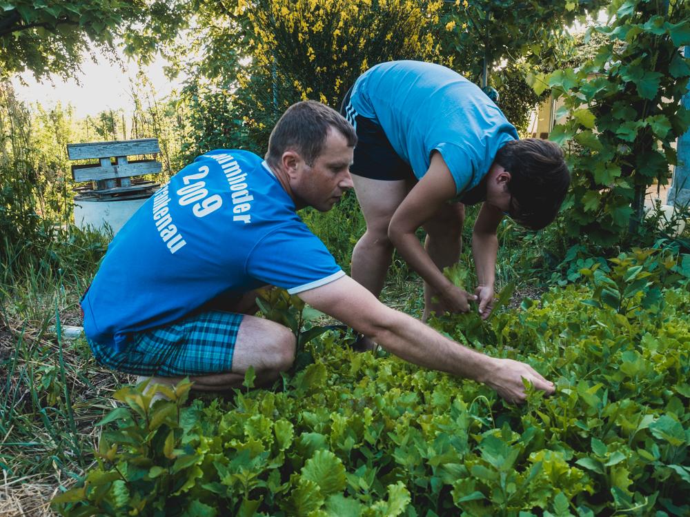 ...helfen bei der Gartenarbeit