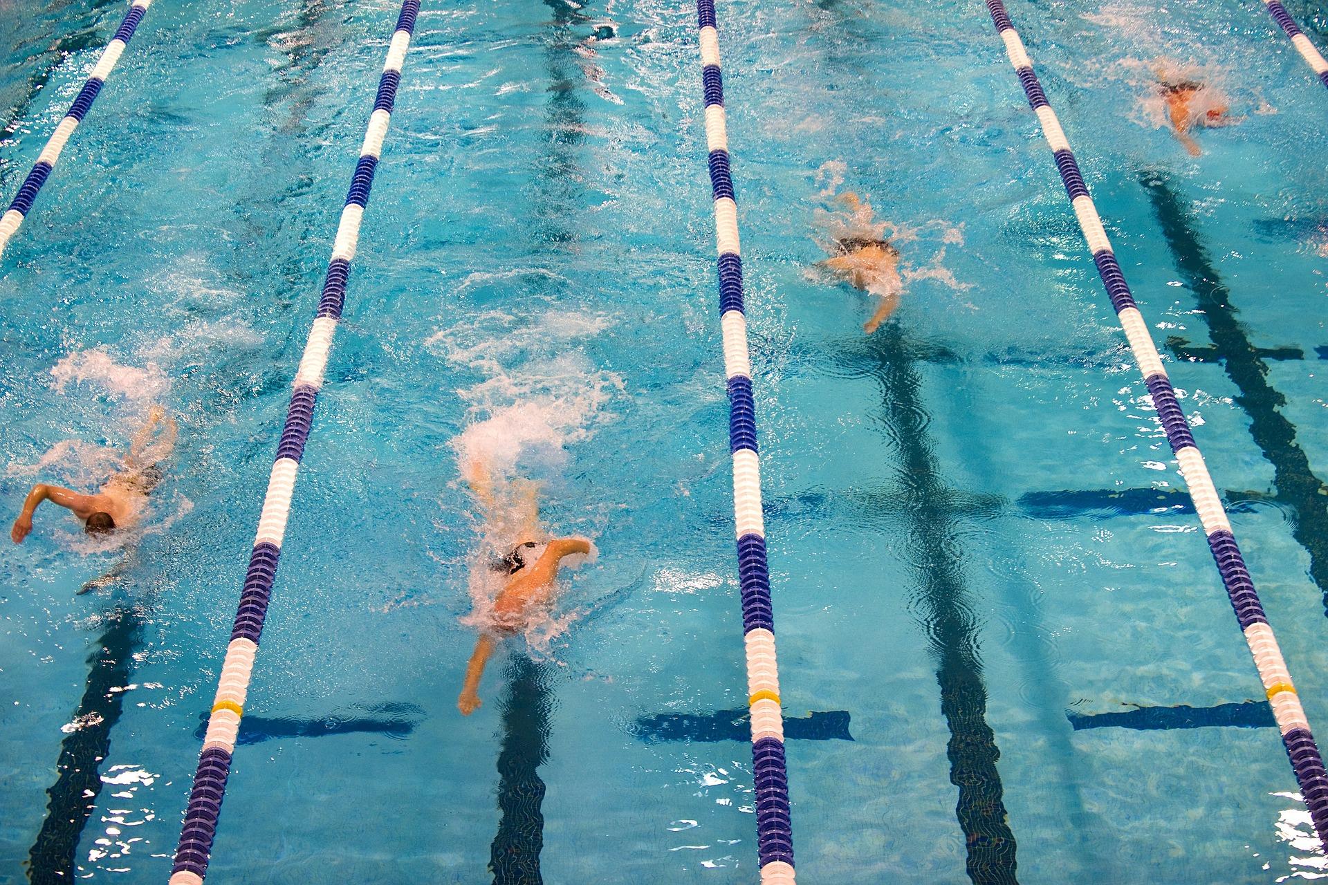 swimming-659903_1920.jpg