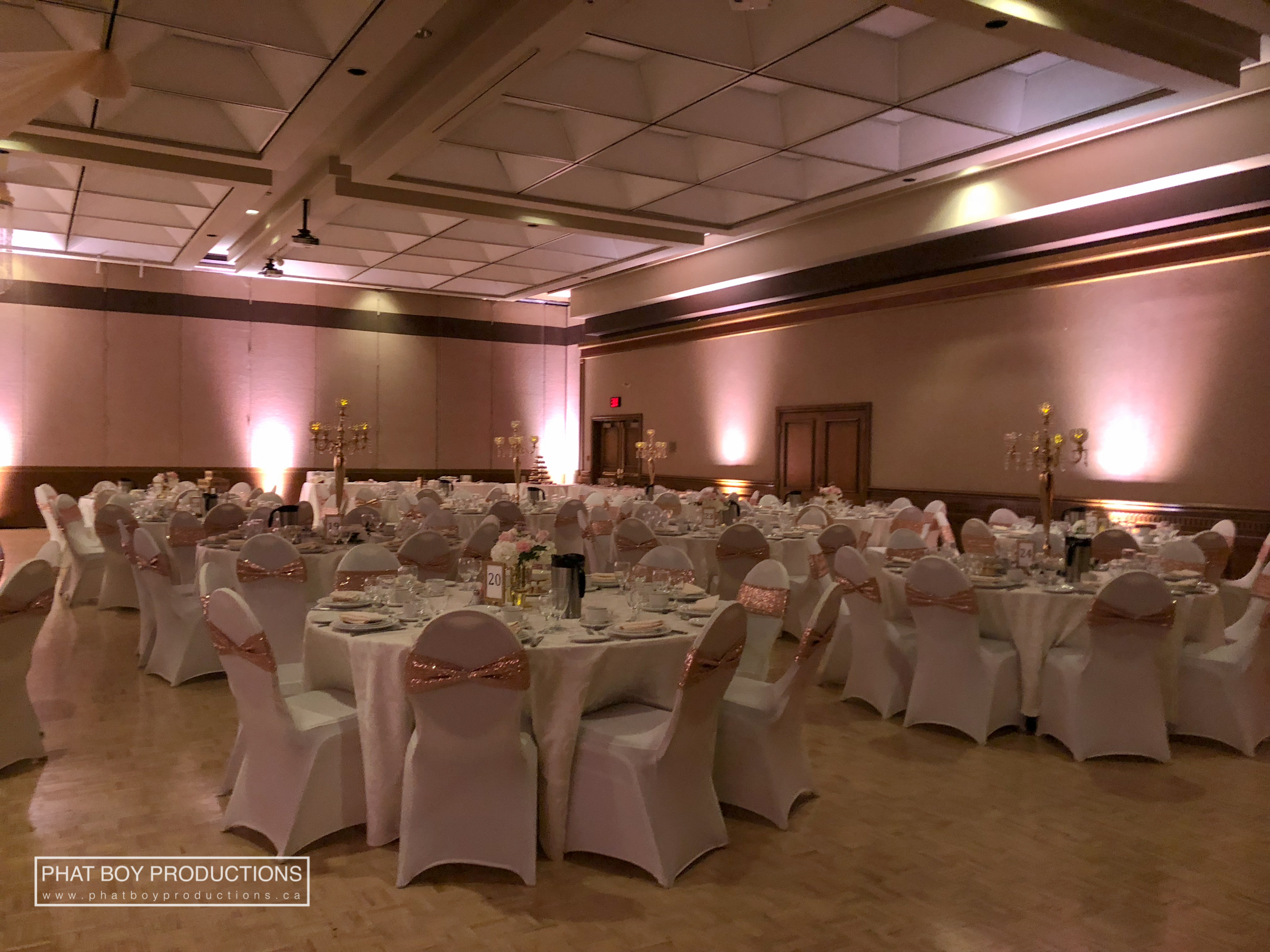 Ryan & Alicia - Specialty Lighting -1.jpg