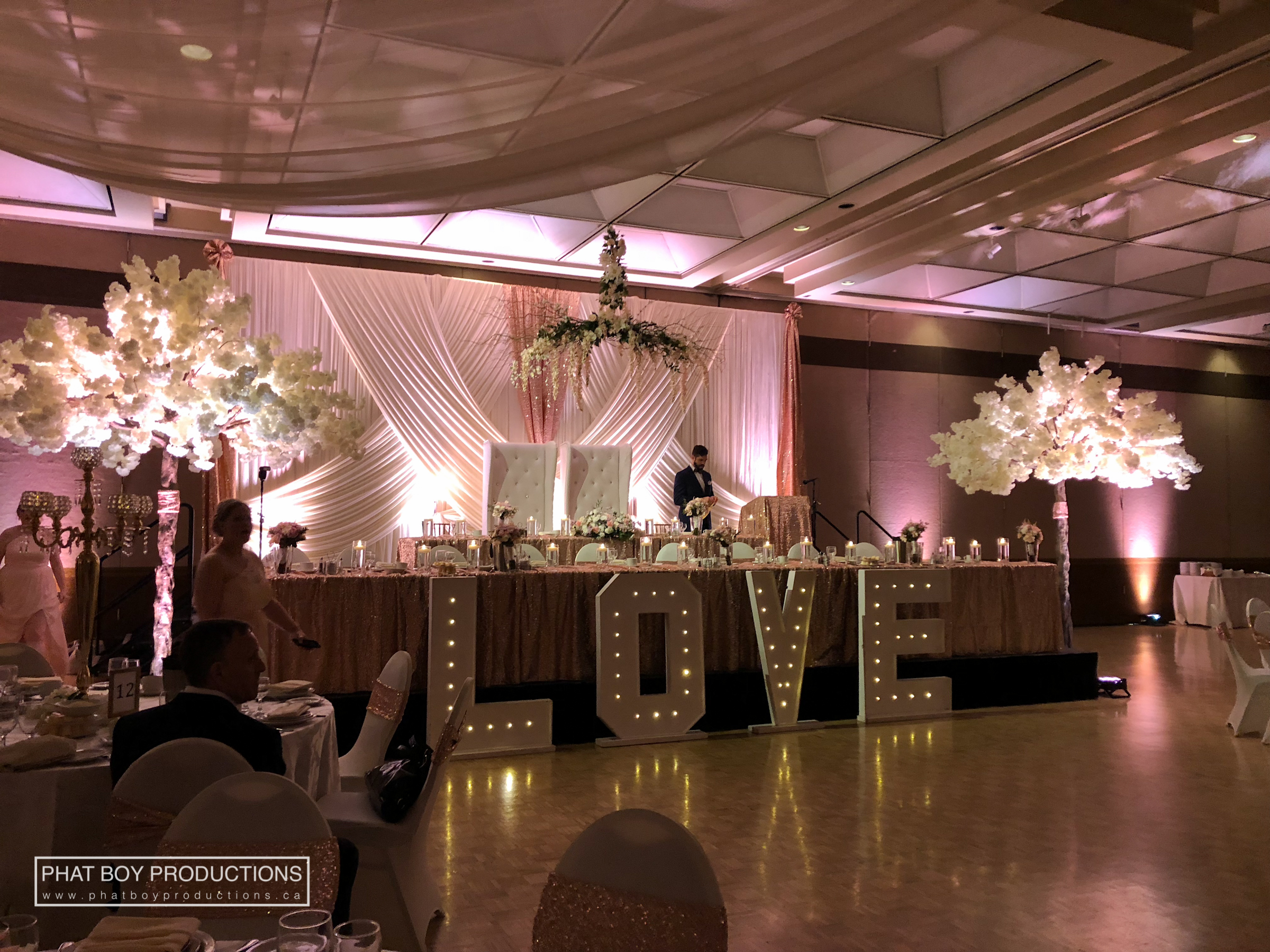 Ryan & Alicia - Specialty Lighting -2.jpg