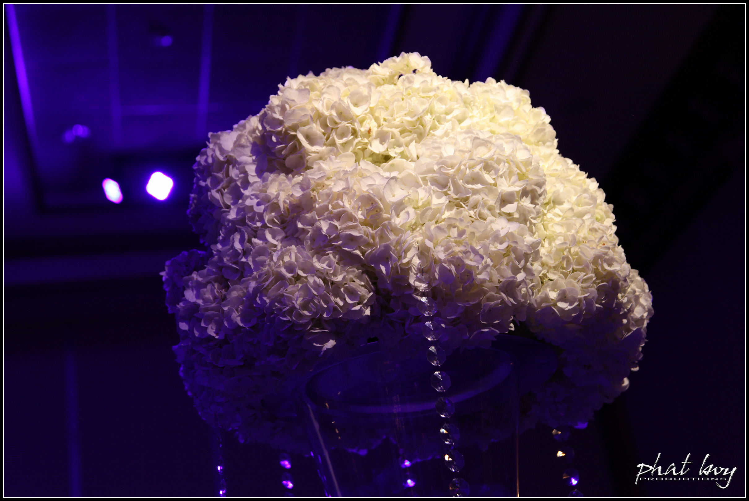 Ted & Mecy - Specialty Lighting - WEB EDITS-2.jpg