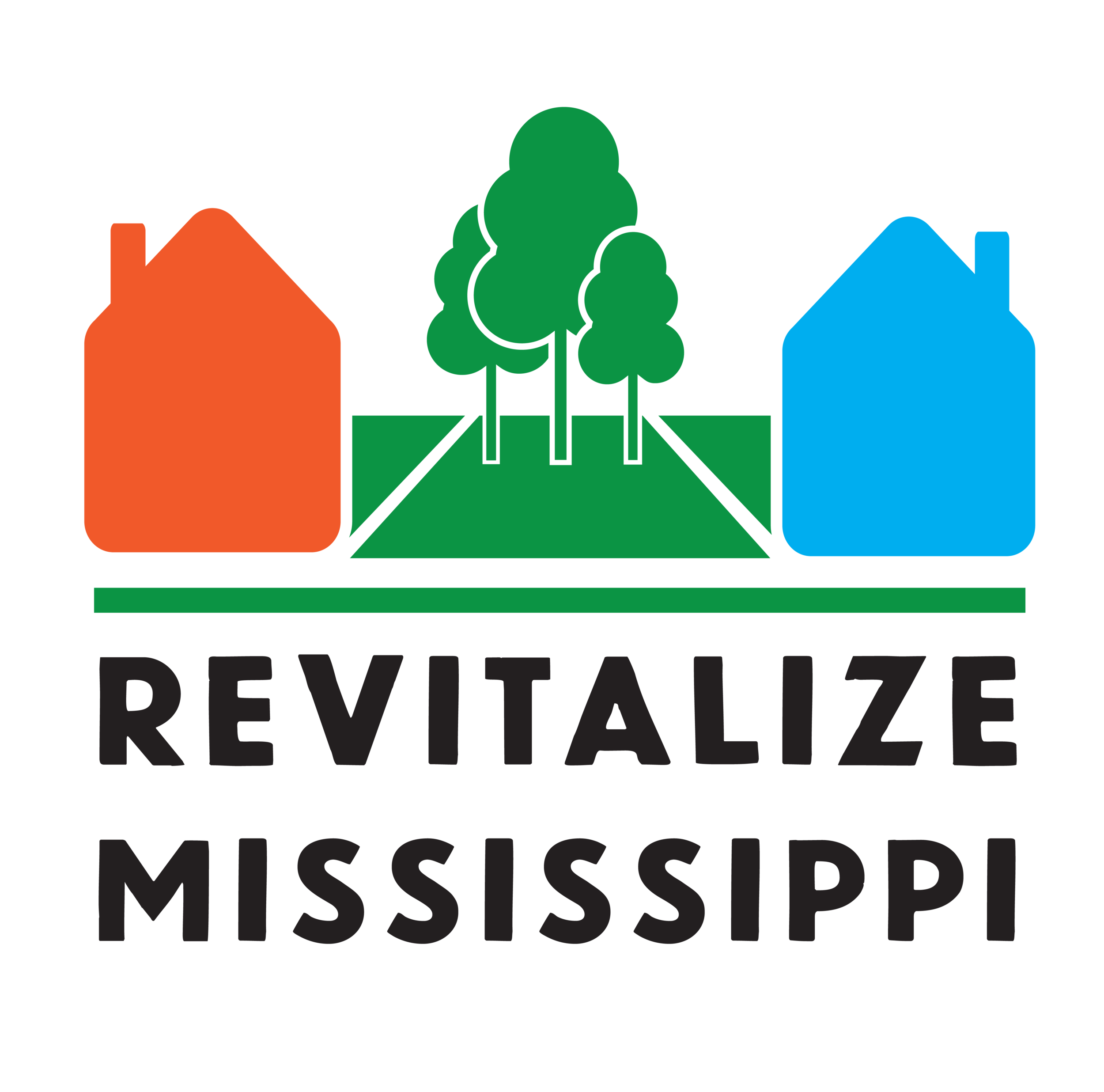 - Revitalize Mississippi, a 501(c)(3) non-profit corporation, was formed to address problems with abandoned property and blight in the Jackson area. Specifically, Revitalize Mississippi cleans overgrown lots, demolishes dilapidated houses, and provides related guidance to eligible neighborhoods and communities.