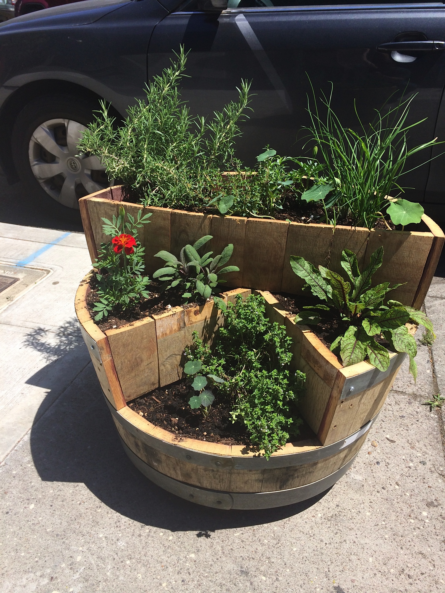 Multi-tiered barrel planter