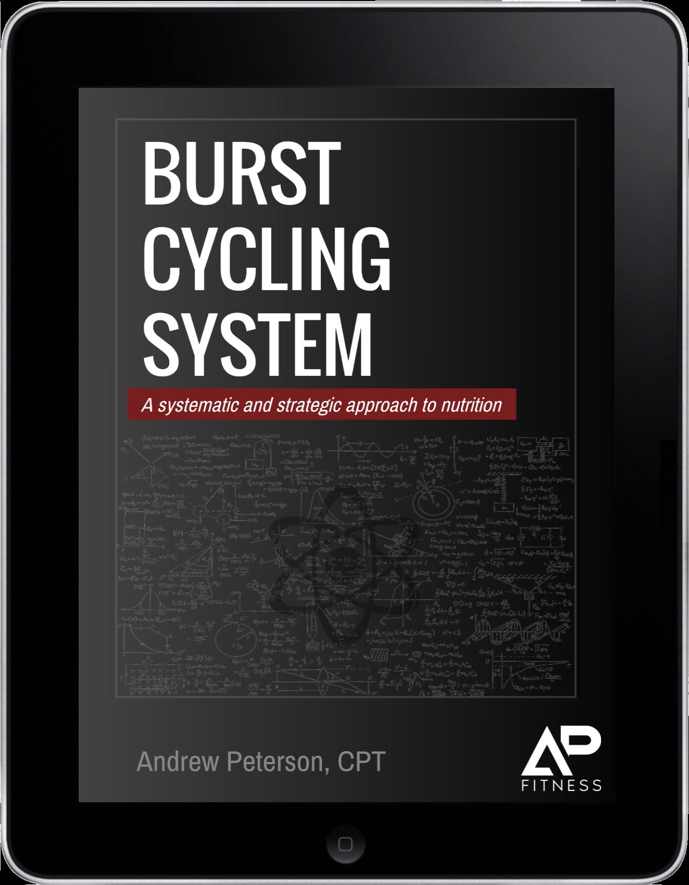 BCS eBook.png