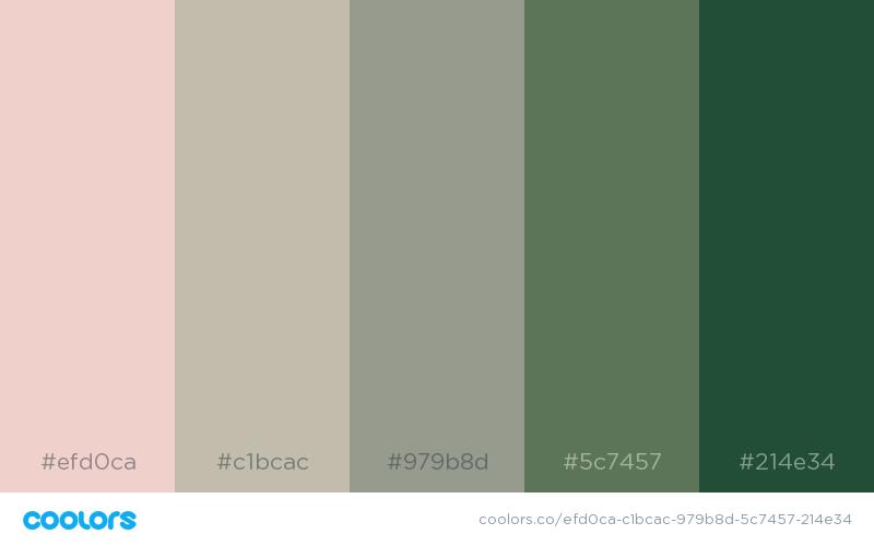 efd0ca-c1bcac-979b8d-5c7457-214e34.png