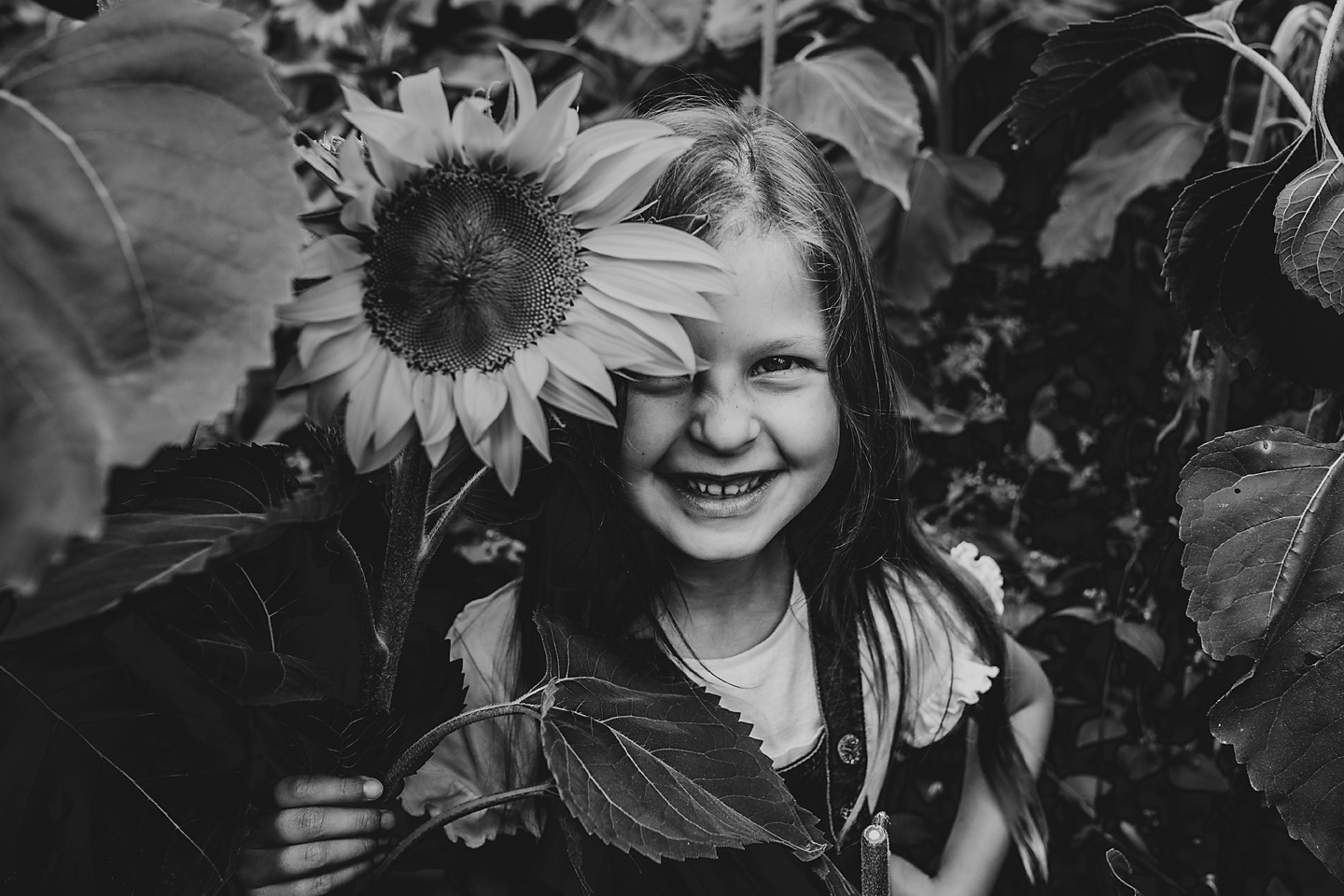dartmouth photographer, north devon, south devon, portrait, sunflowers, beach, relaxed, natural, family, parenthood, stylish, loving, embracing, thoughtful, with feeling, tog, images, pics (1 (4).jpg