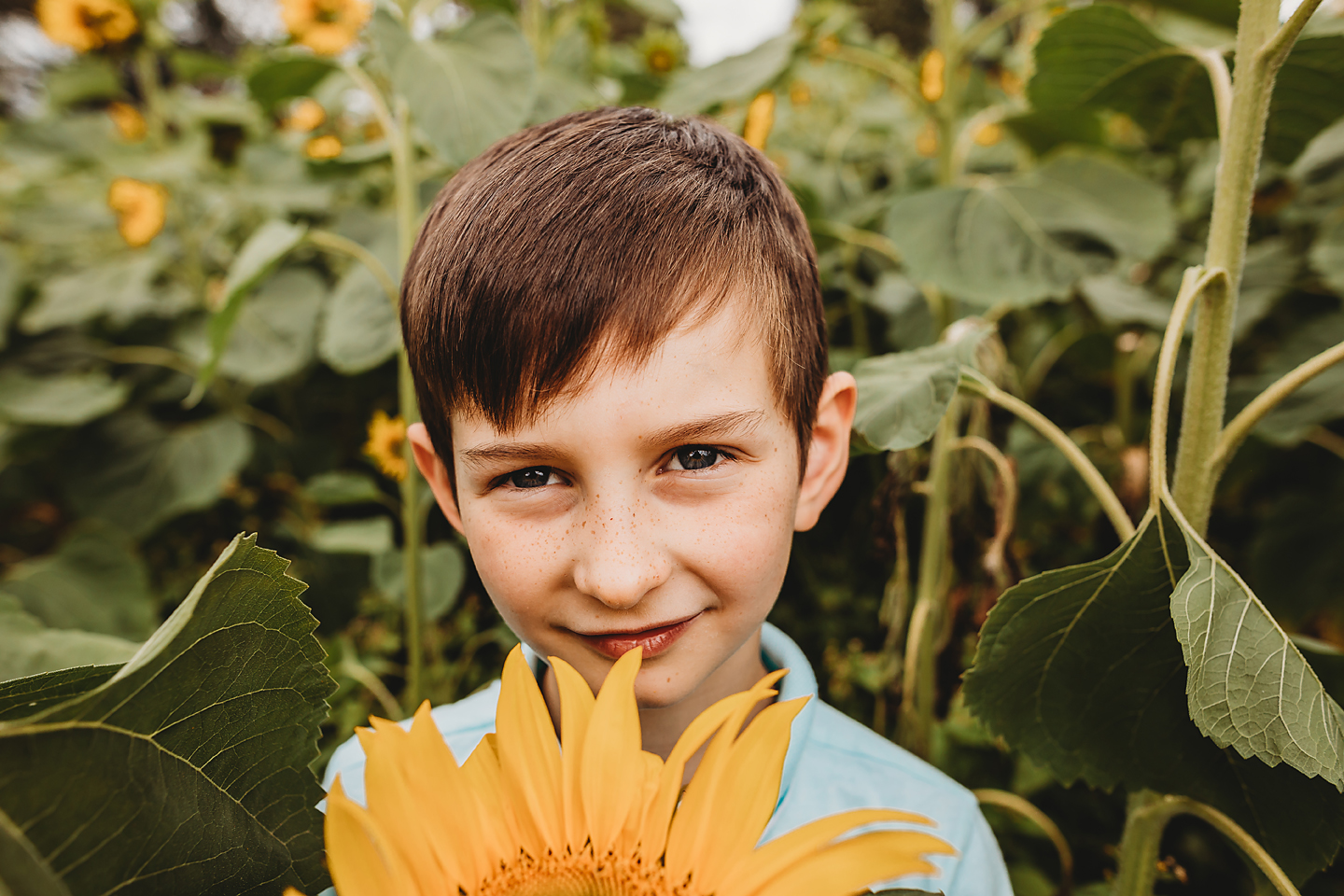 dartmouth photographer, north devon, south devon, portrait, sunflowers, beach, relaxed, natural, family, parenthood, stylish, loving, embracing, thoughtful, with feeling, tog, images, pics (1.jpg