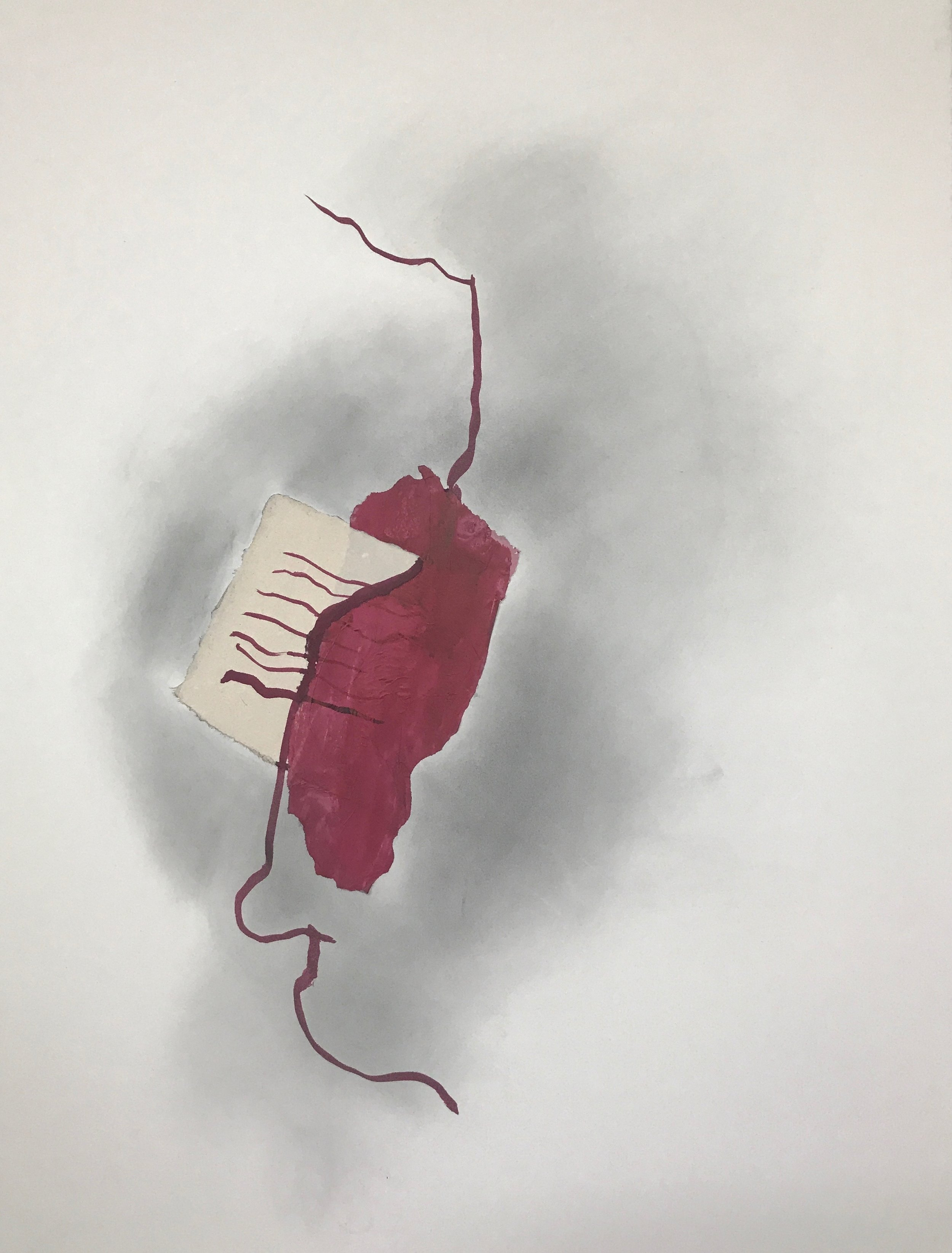 COCHINEAL DRAWING  #6