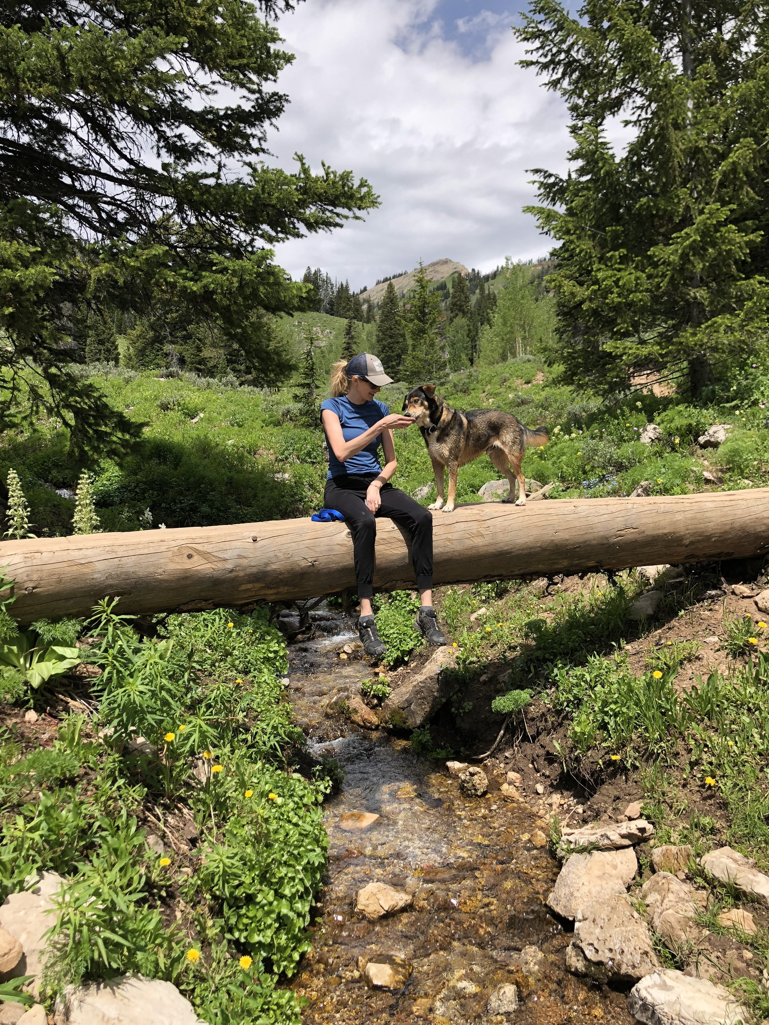 Emily's source of strength and happiness: Being in nature with her dogs