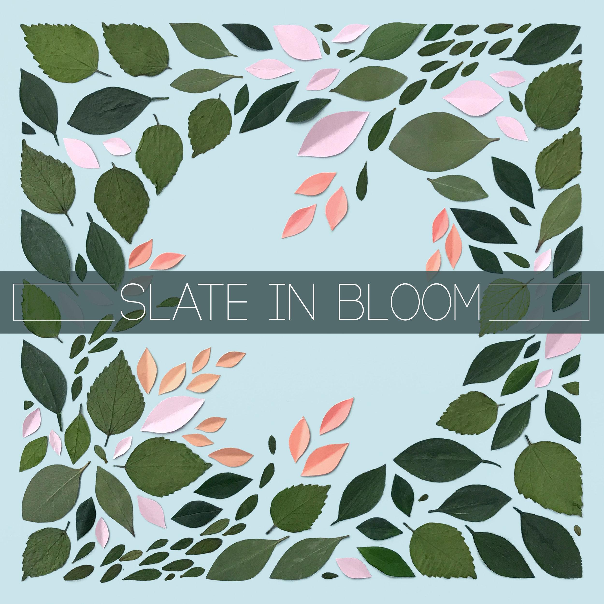 Slate in bloom.jpg