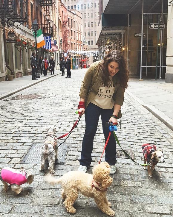 NYC+Dog+walking.jpeg