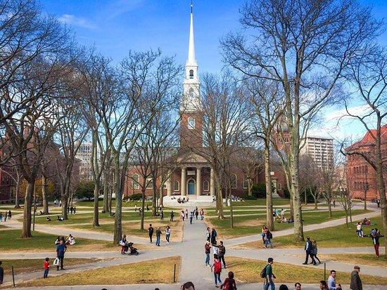 HarvardU.png